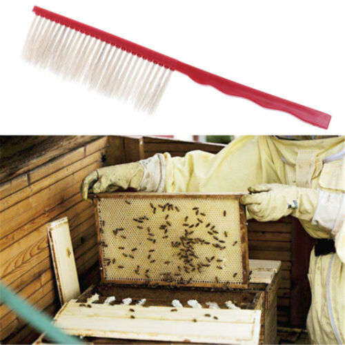 Plastic Sweep Bristle Beekeeping Bee Brush Beekeeper Beehive Tools New CN