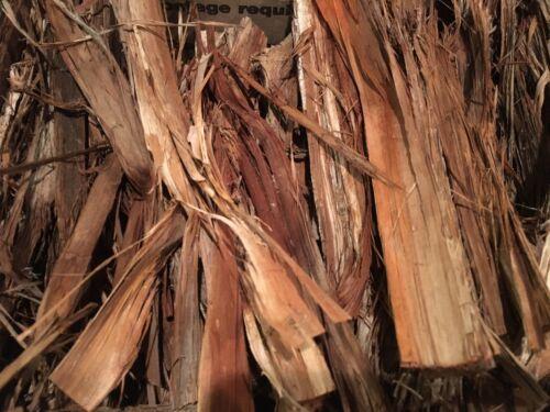 2 oz Cedar Bark ceder Cambium Fire Starting Amadou Flint Steel bowdrill Charcloth environ 56.70 g