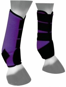 Showman-PURPLE-Neoprene-Horse-Sport-Boots-For-Front-or-Hind-Legs-NEW-HORSE-TACK