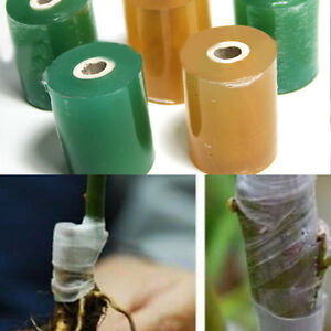 1Roll 80M Durable Flower Nursery Grafting Tape Garden Tool Self-Adhesive Random