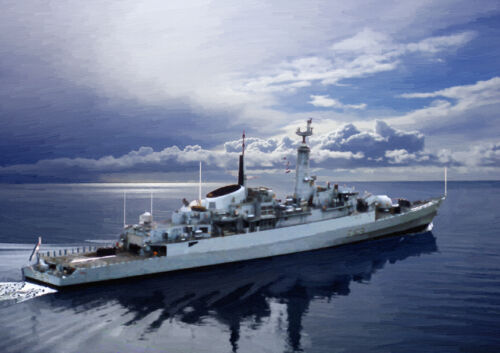 25 Edición Limitada HMS Amazon-mano acabado