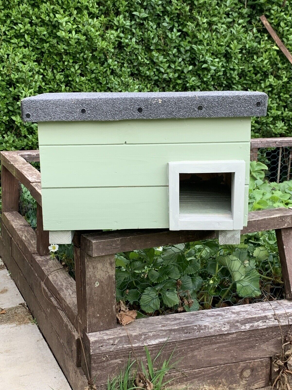 Hedgehog Nest Box. We Will Donate For Every Box Sold To Hedgehog Charity !!