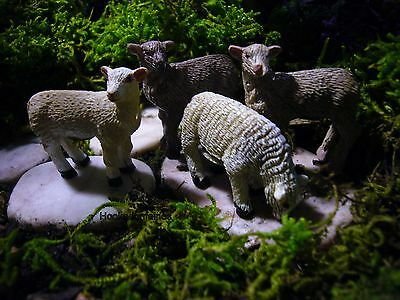 Miniature Fairy Garden  Lamb Sheep Set/4 / Gnome Hobbit Dollhouse MLA100