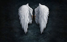Large Framed Print - Pure White Gothic Feather Angel Wings (Picture Poster Art)