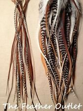 Lot 50 Grizzly Solid Feathers Hair Extensions long fluff real Thick N Thin Nat