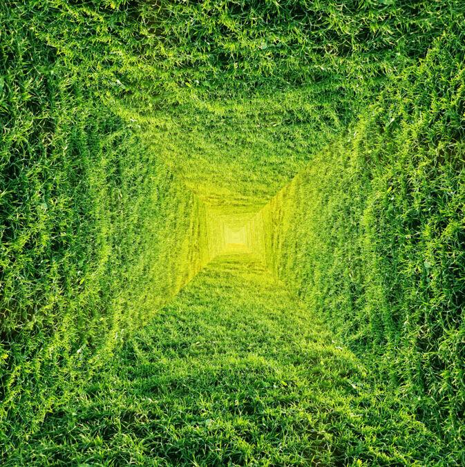 3D Porte Vert Fond d'écran Plafond étage Peint en Autocollant Murale Plafond d'écran Chambre FR 9872e5