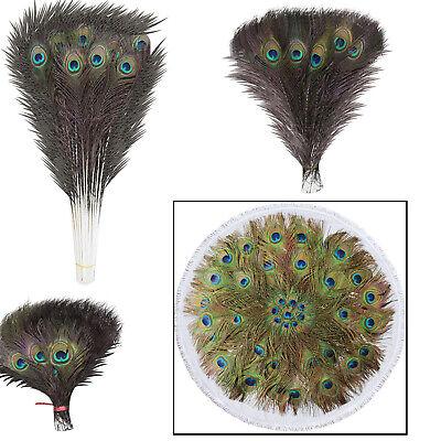 Pacchetto di dieci piume di pavone-DECORAZIONI//addobbi floreali//Crafts-UK Venditore
