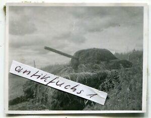 Foto :  extrem getarnter Panzer aus Rußland in der Kalmückensteppe im 2.WK