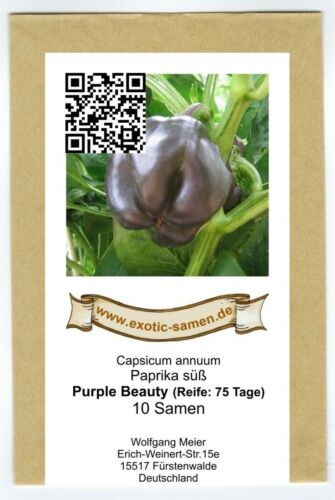 Purple Beauty 10 Samen süß Paprika