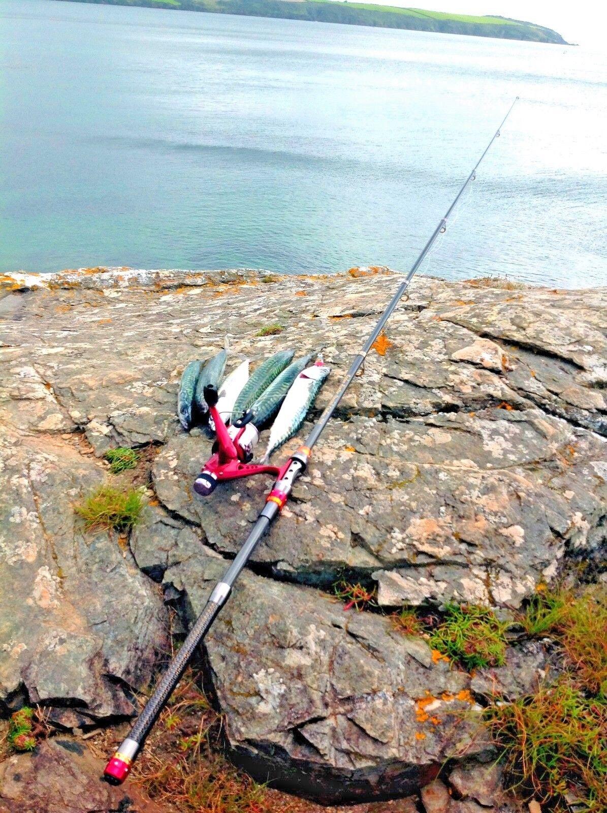 TRAVEL CARBON 3.0 METRE FISHING ROD & REEL SET inc LINE, CARP,CHUB,PIKE,PERCH