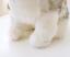 Realistic-Husky-Dog-Plush-Toy-Stuffed-Animal-Soft-Wolf-Pet-Doll-Cute-Kid-Gift-7 thumbnail 6