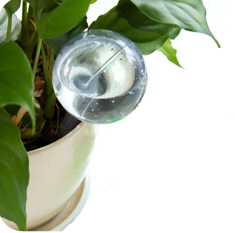 Automatic Watering Device Transparent Houseplant Plant Garden House Watering