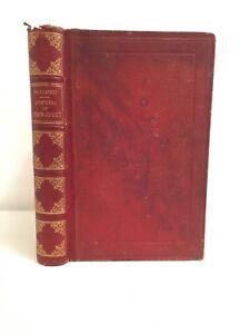 Las Aventuras De Robin Juguete Emilecarrey Trucos 1865