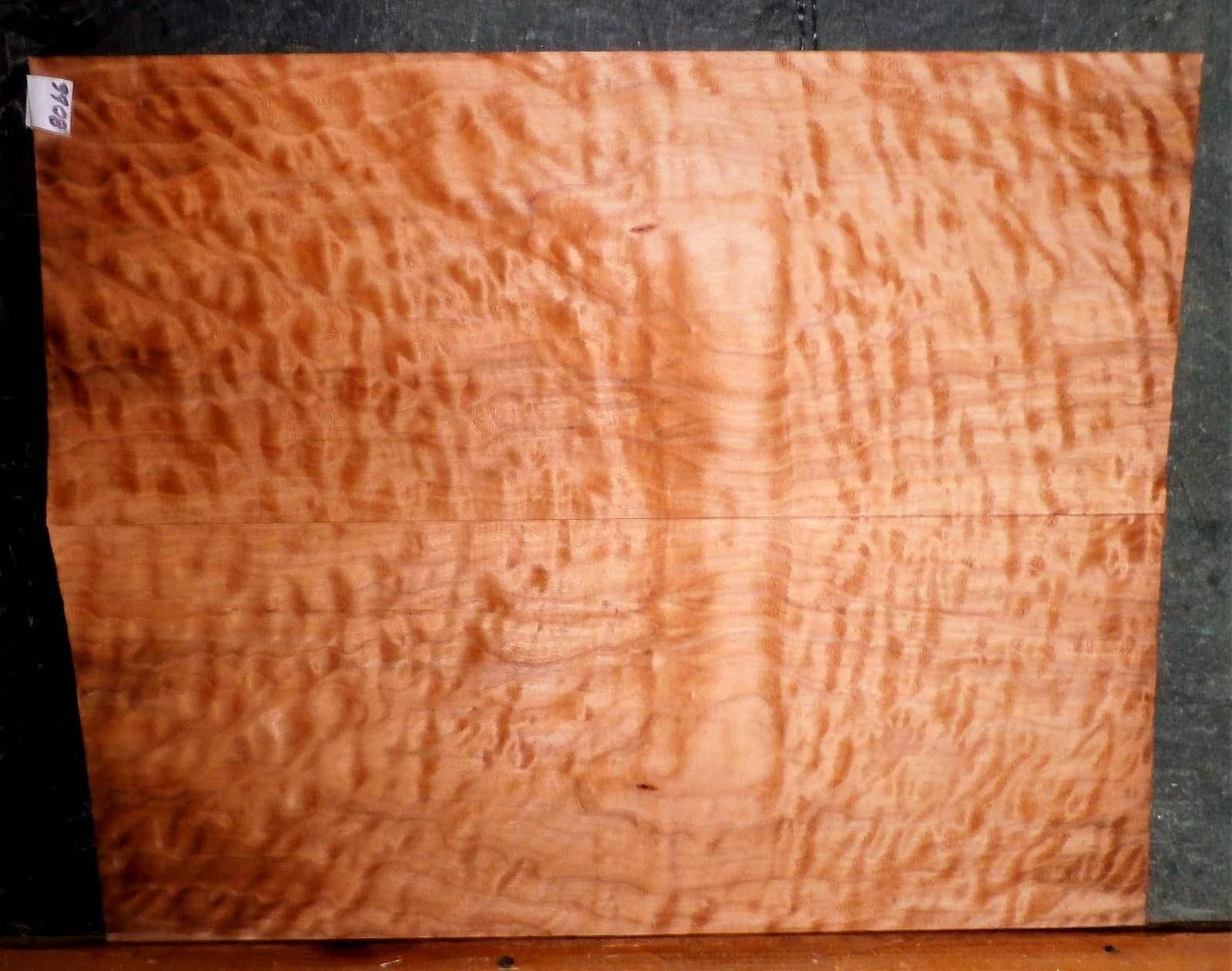 Gesteppt Tiger Curly Ahornholz 8066 Gitarrenbauer Instrument Holz 23.5 X 19 X