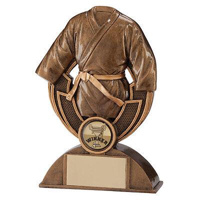 Karate/Martial Arts Trophies Resin Antique Gold Karate Award 110m FREE Engraving