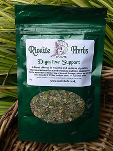 Riodite-Digestive-support