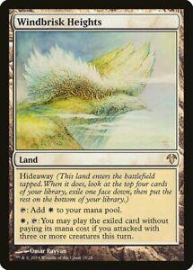 NearMint Magic MTG Windbrisk Heights ~ Modern Event