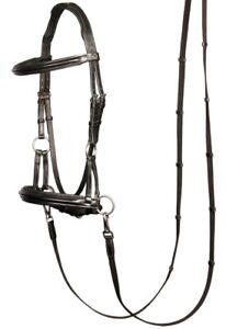Harry/'s Horse Trense gebisslos Sidepull Leder unterlegt schwarz VB WB