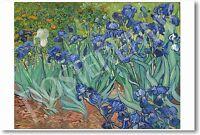 Irises 1889 - Vincent Van Gogh - Dutch Fine Art Print Poster