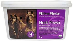 HILTON-HERBS-HERB-POWER-SUPPLEMENT-FOR-HORSES-SUPPORTS-ALL-YEAR-ROUND-HEALTH