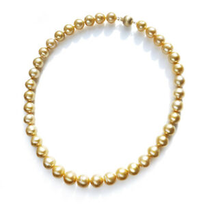 Golden-Real-South-Sea-Cultured-Pearl-Strand-Necklace-Solid-14k-Yellow-Gold-AU585