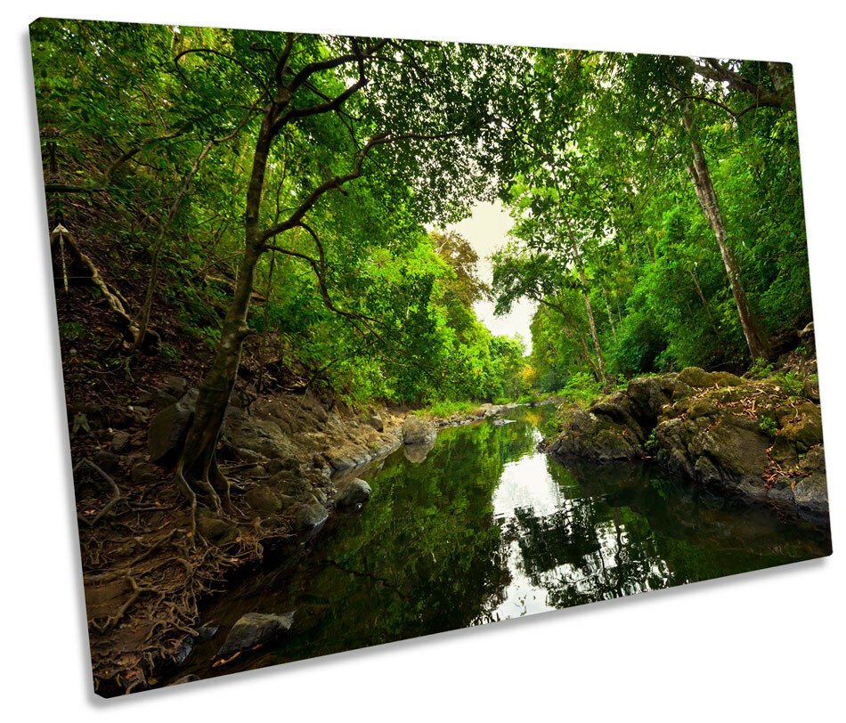 Grün Forest River Woods CANVAS WALL ART Picture Print Single