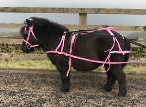 Nylon-driving-harness-set-shetland-extra-full-FREE-CARRY-BAG-For-horse-cart