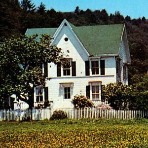 Vintage 1983 Farmhouse Audubon Canyon Ranch Postcard Stinson Beach Redwoods CA