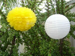 20x pink paper pom poms white lantern wedding party baby shower venue decoration