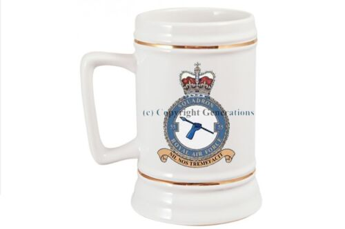 ROYAL AIR FORCE 55 SQUADRON BEER STEIN