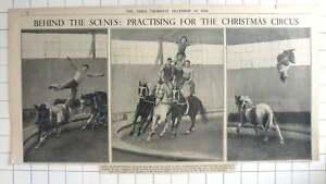 1936-Behind-the-scenes-Practice-Bertram-Mills-Circus-Ascot-Depot