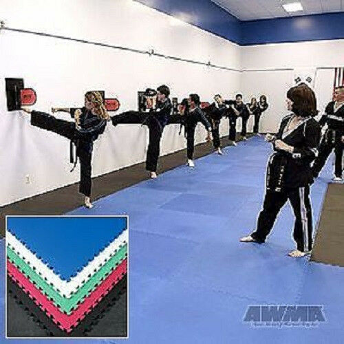 10 Martial Arts Jigsaw Mats MMA Wrestling Equipment - 100 sq ft. Set of 10