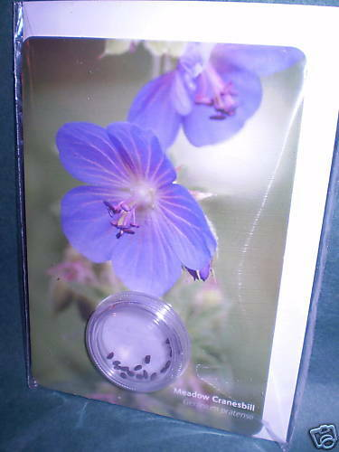 WILDFLOWER GREETING CARDS & SEEDS,MEADOW CRANESBILL