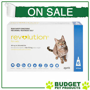 REVOLUTION For Cats 2.6-7.5kg 6 pack
