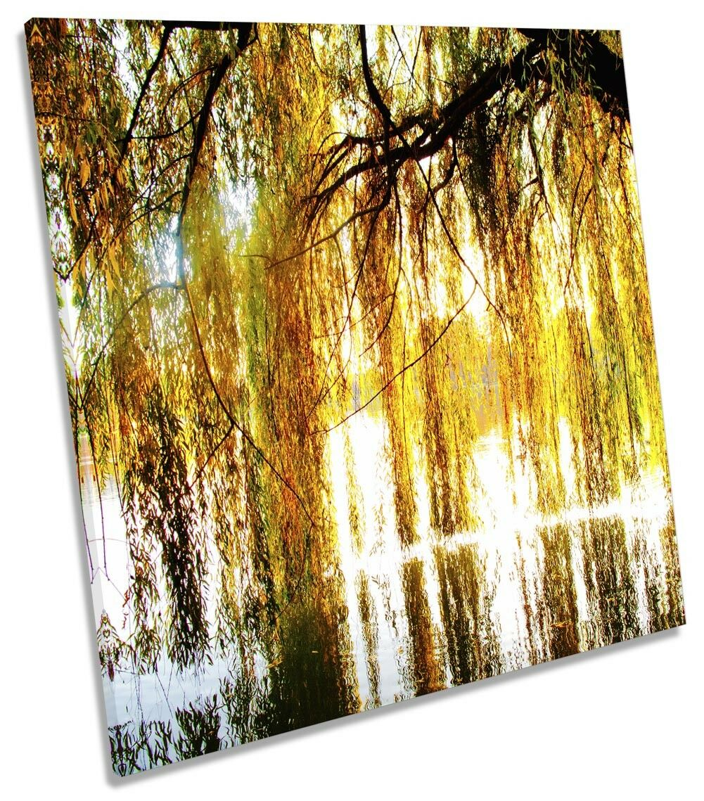 SALICE PIANGENTE Tree Blossom picture tela Wall Art SQUARE Stampa