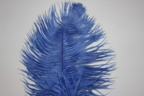 One royal blue drabs ostrich feather first grade 33-40CM 13-16