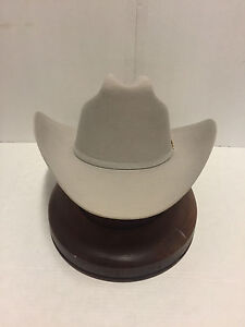 f3b4cd08c67 Stetson Cowboy Hat 6X Beaver Fur Mist Grey PALACIO W Free Hat Brush+ ...