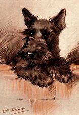 Scottish Terrier Dog On Wall 1930's by Lucy Dawson Large New Blank Note Cards