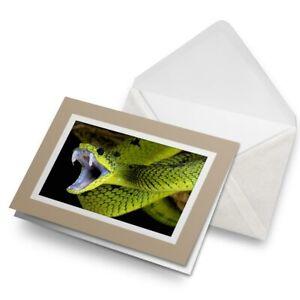 Greetings-Card-Biege-Cool-Green-Snake-Fangs-Snakes-8899