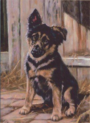 new german shepherd dog alsatians puppies greeting card dogs mum dad birthday
