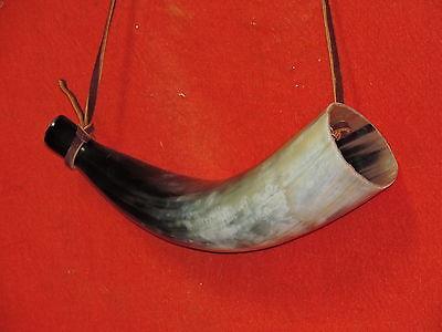 Long Bull Horn Longhorn Steer Horns Large Blowing Horn Cow Horn 15 IN