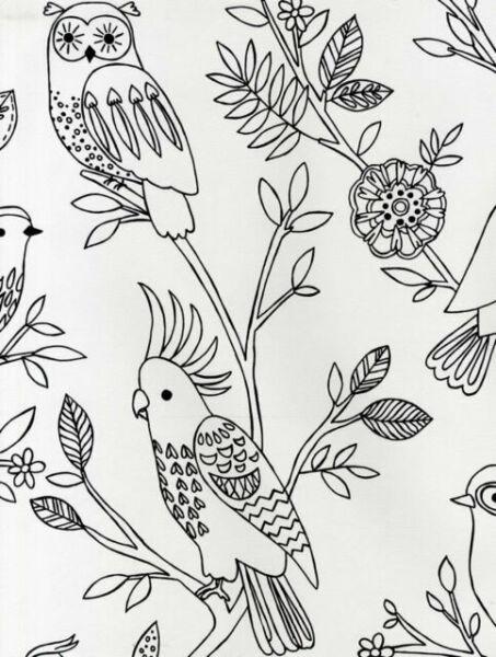 292909 Kids /& Teens II Birds COLOUR IN YOURSELF White Black Galerie Wallpaper