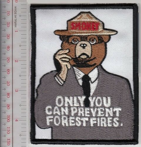 Smokey the Bear Mask Poster Smokey Says /'/'Only You Can Prevent Forest Fires/'/' Pa