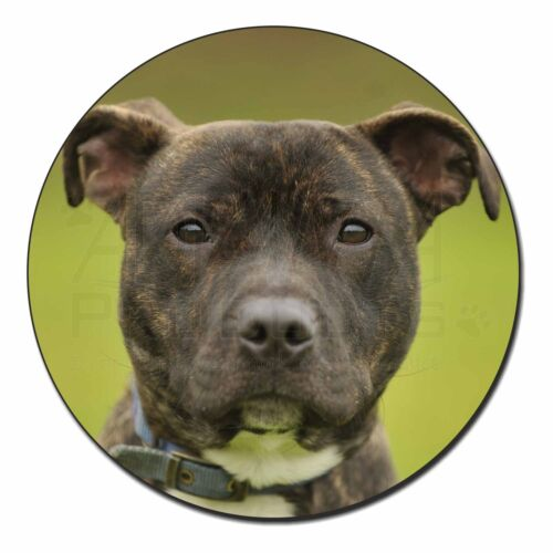 Staffordshire Bull Terrier Fridge Magnet Stocking Filler Christmas G, AD-SBT12FM