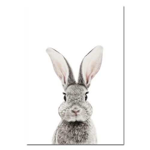 Woodland Animal Rabbit Bunny Canvas Posters Nursery Wall Art Print Bedroom Decor