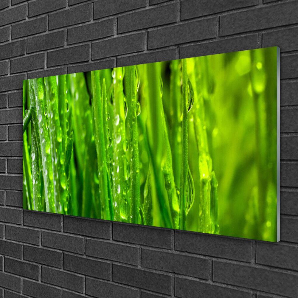 Glass Glass Glass print Wall art 100x50 Image Picture Grass Nature 68e677