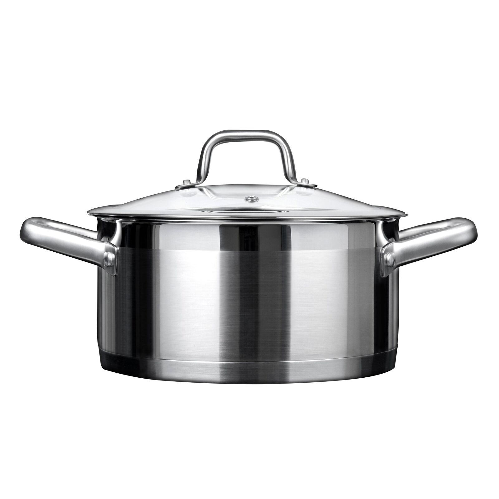 Duxtop Professional Stainless steel Cookware Induction Ready Impact-bonded