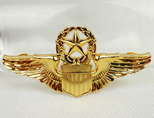 Indian Airlines Pilot Golden Wings Badge Ebay - Imagez co