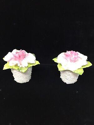 eBay & Coalport Bone China Porcelain Mini Flower Figurine in Textured Vase Set Of (2) | eBay