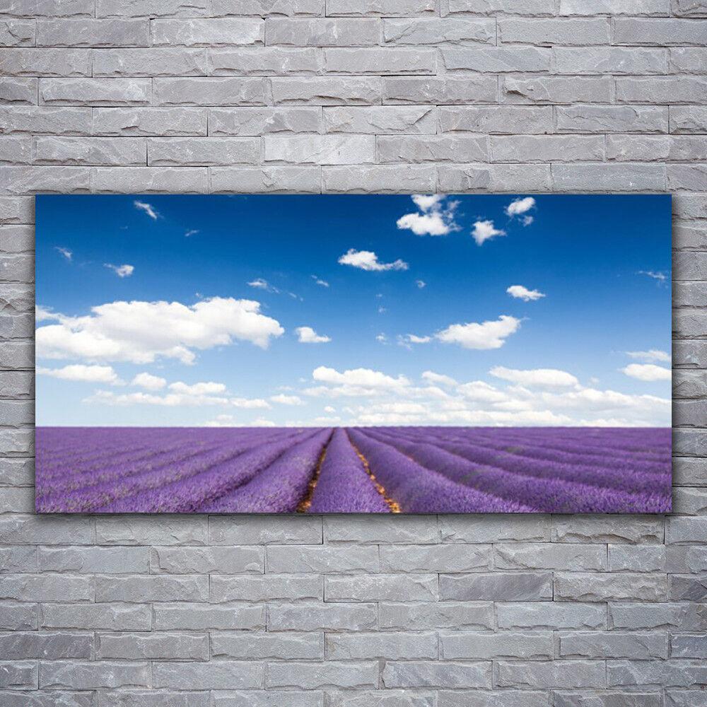 Verre Imprimer Wall Art Image 120x60 Photo Meadow Fleurs Nature